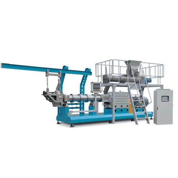 Breakfast Cereals Corn Flakes Twin Screw Puffs Snacks Food Production Making Extruder Machine Line