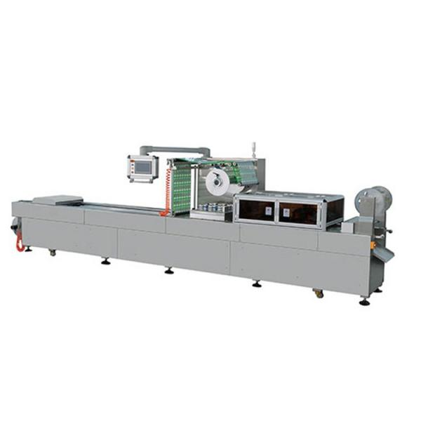 Hake Burger with Spinachs and Nuts Thermoforming Vacuum Packaging Equipment